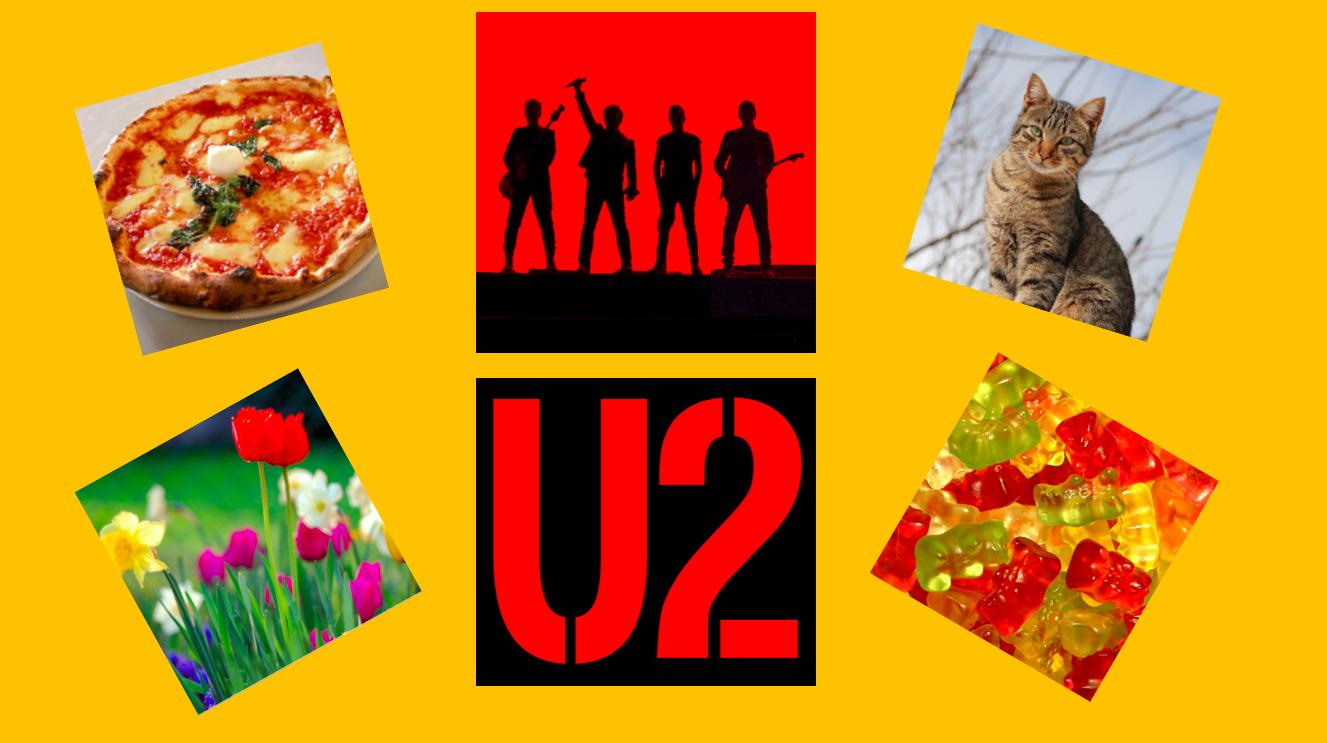 Svaraðu 7 spurningum og við segjum þér hvort þú sért U2 aðdáandi!