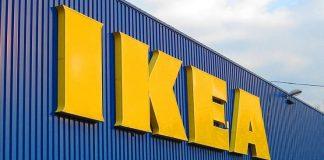 Viðskiptavinir Costco drösla níðþungum kerrum yfir gras hjá IKEA til að spara sér 20 metra göngu