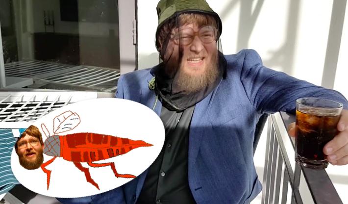 Fyrsta dægurlagið í heiminum sem er sérstaklega samið um lúsmý - Sjáðu myndbandið
