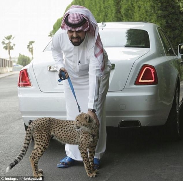 An exotic pet such as a cheetah is the ultimate status symbol for the moneyed elite of Saudi Arabia