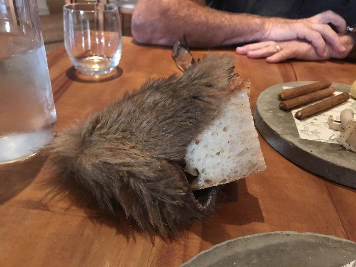 My Bread Served Inside Roadkill