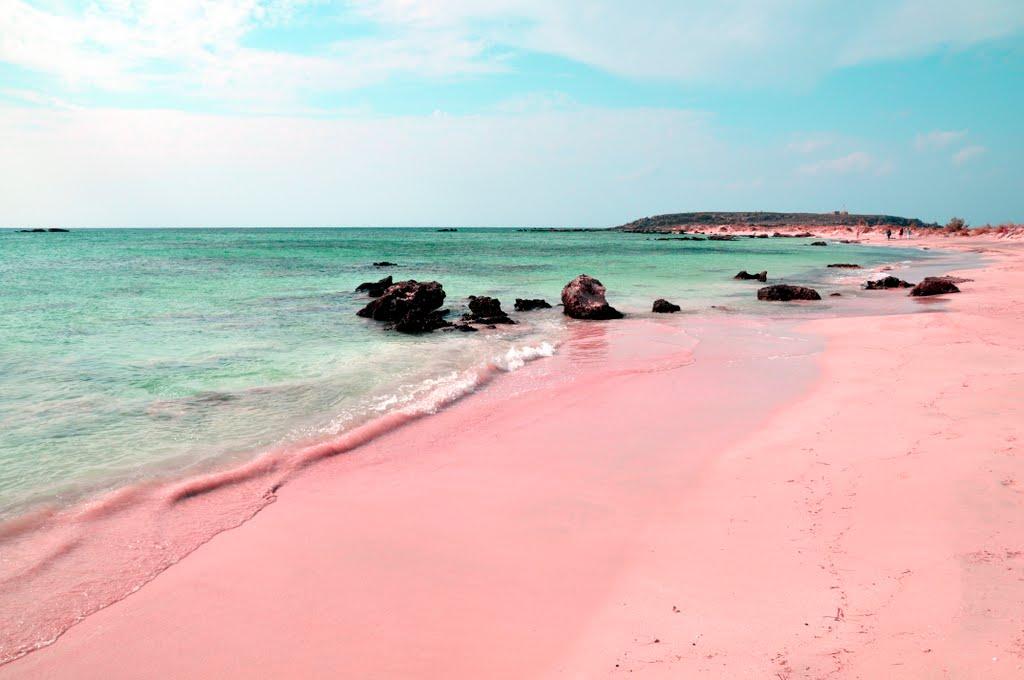 Image result for pink sand bahama