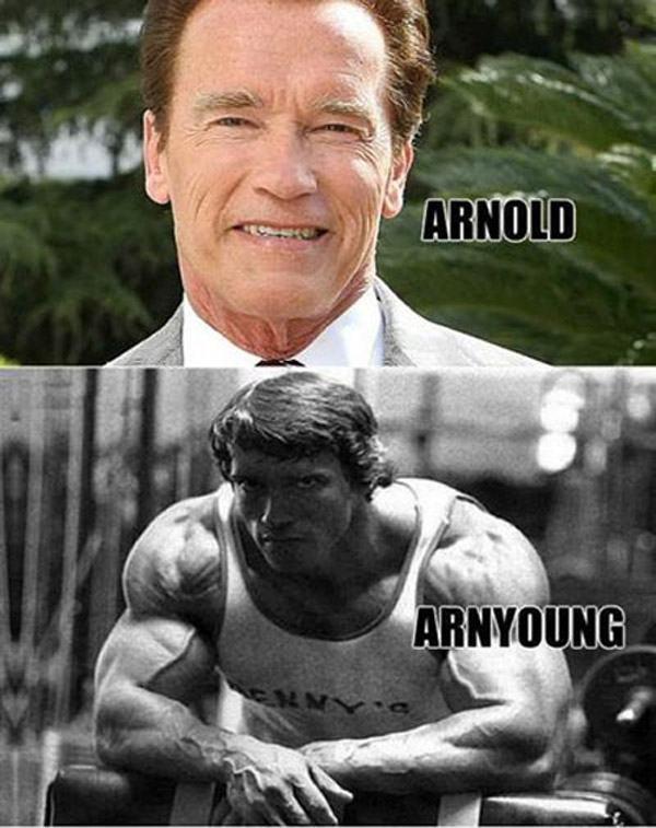 Celebrity Name Puns Arnold