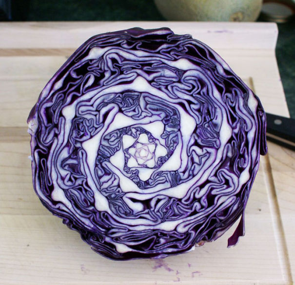 Amazing Natural Geometry In Cabbage