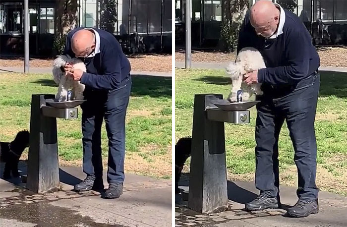Man Washes His Dog's Behind In A Water Fountain At A Park - And Refuses To Stop When Horrified Passers-By Yelled At Him In Disgust