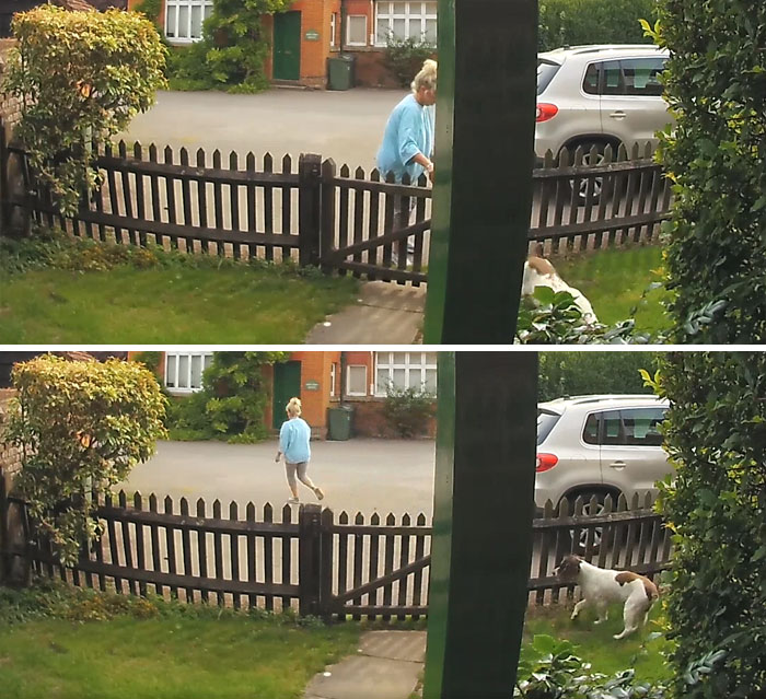 This Woman Dumping Her Dog In My Best Friends Front Garden...