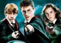Bara alvöru Harry Potter aðdáendur ná þessu prófi – Þekkir þú þau bara á SKUGGA þeirra?