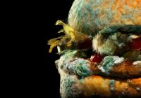 Myglaður hamborgari í nýrri auglýsingaherferð Burger King